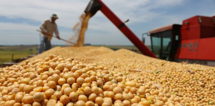 Despite the drop in international prices, the Argentinean government maintains heavy taxes on agricultural products.