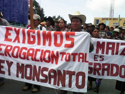 ft-guatemala-monsanto